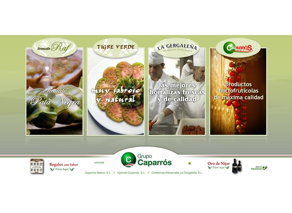 Sitio web - Grupo Caparros