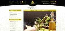 blog orobaena web diseño