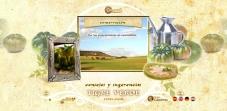 """Sección """"Consejos y sugerencias"""" - Sitio Web Tigre Verde"""