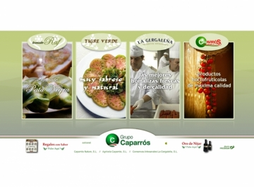 Grupo Caparros Sitio web